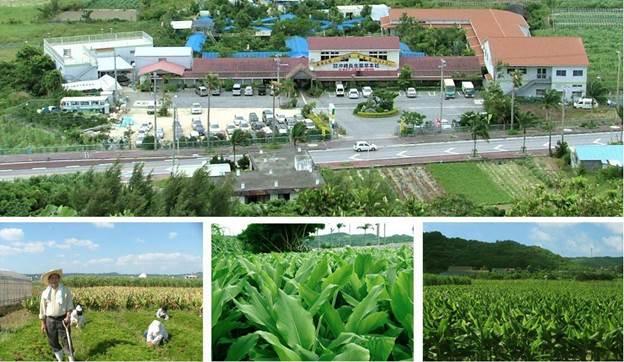 Shugo Densetsu được sản xuất khép kín từ canh tác nguyên liệu đến chiết xuất ra thành phẩm. Nhà máy sản xuất đạt tiêu chuẩn GMP Nhật Bản