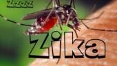 hieu ve virut zika de phong ngua zika hieu qua