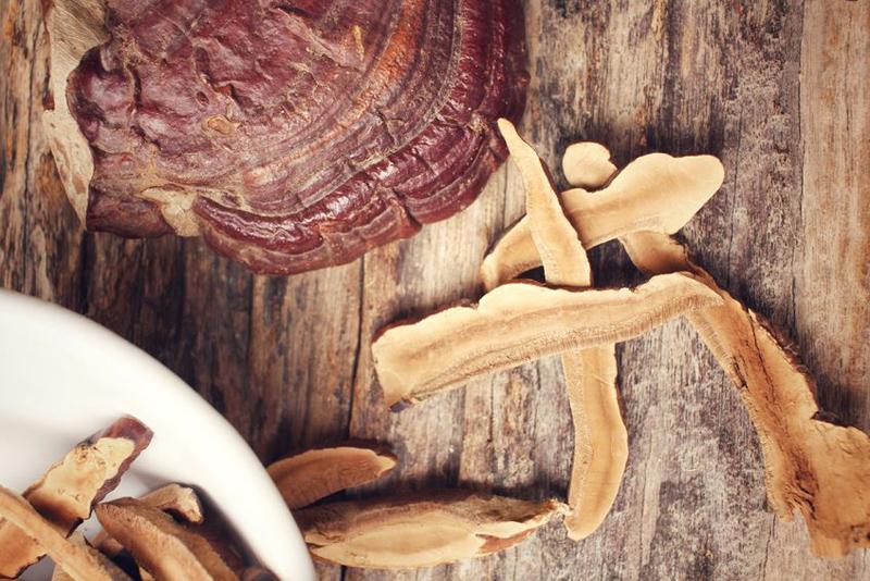 alobacsi nấm linh chi cắt lát